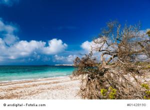 Der Mallorca FKK-Strand Es'Trenc
