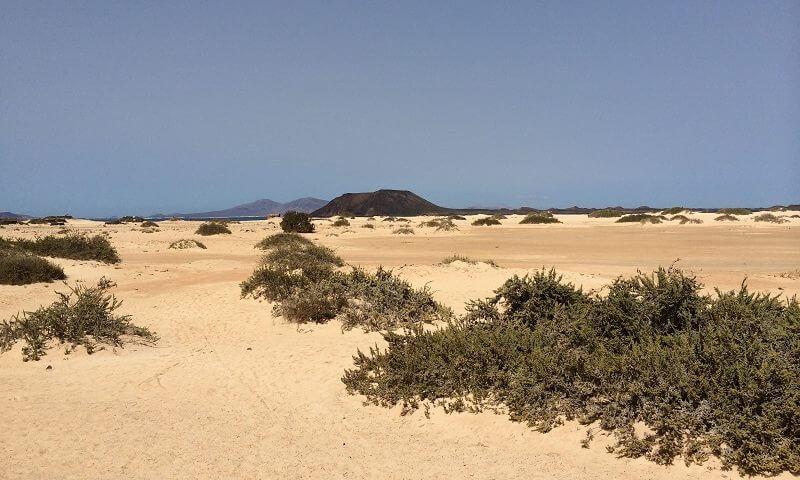 Fuerteventura Reisebericht - Die schönsten Strände und besten Ausflüge der Insel.