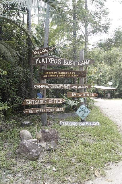 Platypush Bush Camp