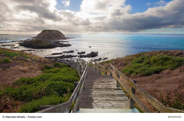 Phillip Island Reisebericht