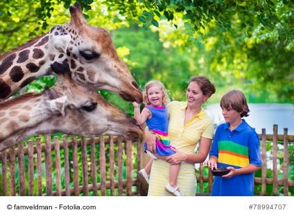 Der beeindruckende Zoo von Singapur.
