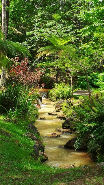 Im Terra Nostra Garten